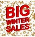 Winter sale poster with BIG WINTER SALE text vector image vector image