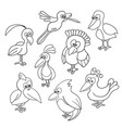 bird collection coloring book on white vector image vector image