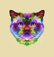colorful cat head on pop art style vector image vector image