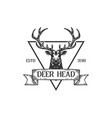 hunting vintage retro hand drawn sketch deer head vector image