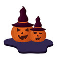 set halloween pumpkins with hat witch isolated vector image vector image