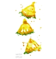 slices pineapple vector image vector image