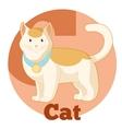 ABC Cartoon Cat2 vector image vector image