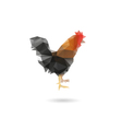 Rooster isolated on a white backgrounds vector image