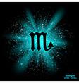 scorpio luminous vector image vector image