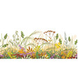 autumn meadow plants seamless border vector image