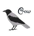 Bird crow vector image vector image