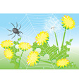 Cartoon spider web vector image