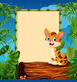 cartoon tiger sitting on hollow log near the empty vector image vector image