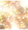 Christmas and New Year feast bokeh with copyspace vector image