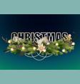 christmas coniferous design vector image vector image
