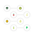 flat icons jonagold cabbage duchess and other vector image vector image