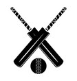 isolated cricket bat and ball vector image