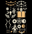 occultism set with pentagram voodoo doll human vector image vector image