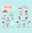respiratory syncytial virus infographic vector image vector image