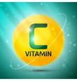 Vitamin C icon vector image vector image
