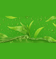 drops green tea 3d realistic vector image