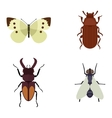 Insect icons flat set isolated on white background vector image