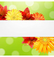 Red Flowers Card vector image vector image