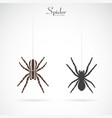 spider on white background insect animal vector image vector image