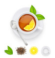 tea cup with fresh green vector image