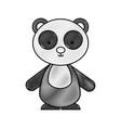 cute and tender bear panda vector image