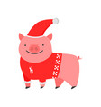 dear kind pig the symbol of the new year piggy in vector image vector image