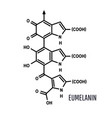 eumelanin chemical molecule structure on white vector image vector image