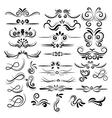 Floral decorative element collection vector image