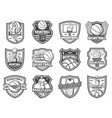 basketball sport ball and player shield badges vector image vector image