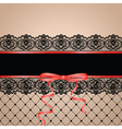 black garter and stocking vector image vector image