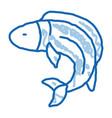 fish doodle icon hand drawn vector image vector image