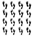 human feet vector image vector image