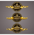 Set of luxury gold badges vector image