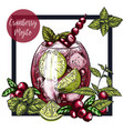 square framed card with cranberry mojito vector image vector image