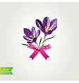 Flowers with bow isolated vector image