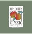 apple cider label light-alcohol beverage engravin vector image