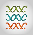 dna genetic sign icon vector image vector image