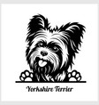 dog head yorkshire terrier breed black and white vector image vector image