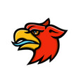 griffin head side mascot vector image