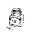 hand drawn glass bottle with salt and crystals vector image vector image