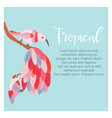 tropical background with exotic birds vector image vector image