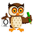 cute owl writing vector image vector image