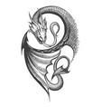 dragon tattoo in engraving style vector image vector image