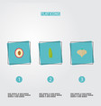 flat icons litchi bean garlic and other vector image vector image