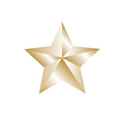 Gold color star vector image vector image