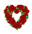 heart roses flowers vector image