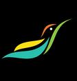 image of an humming bird design on black backgroun vector image