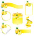 Pineapple Label Set vector image