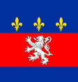 simple flag of city of france vector image